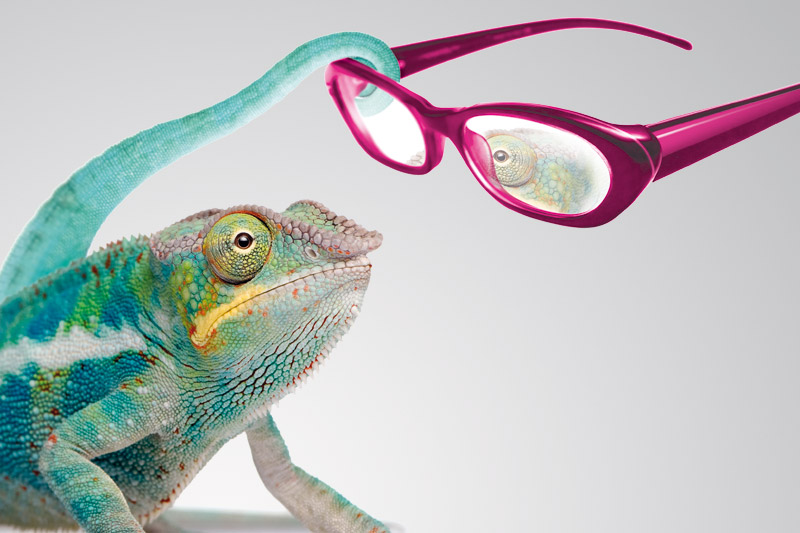 COLORED PLASTICS FOR EYEWEAR